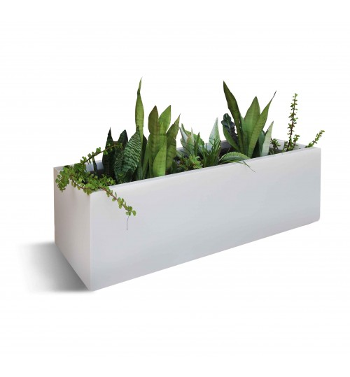 indoor plant with exclusive white pvc box bonayoncom special item for home and add bonsai office interior
