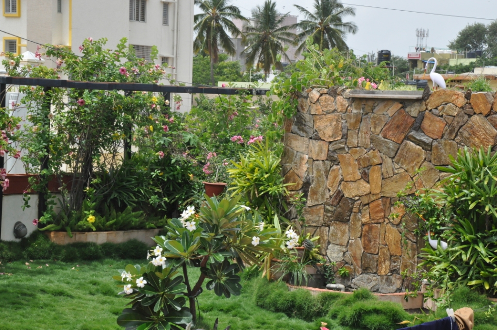 Rooftop Gardening & Lawn Beautification - Green Dhaka